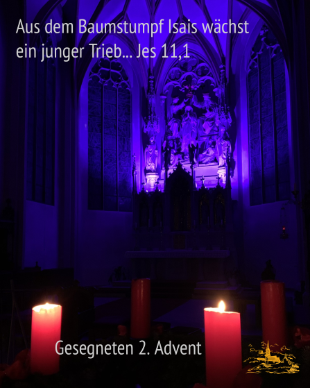 2019-2-advent-kehmh.png